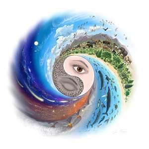 ying yang 1